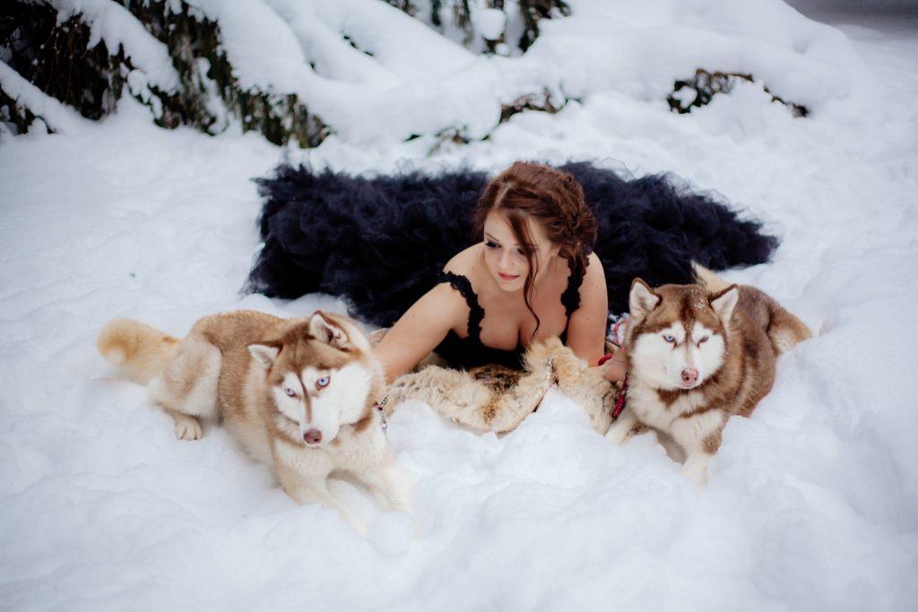 Аренда собак для фотосессий 2