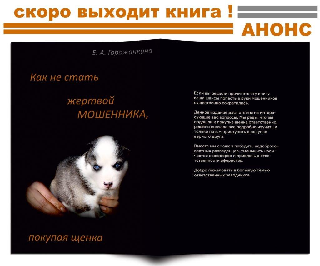 """Выходит новая книга - """"Как не стать жертвой мошенника, покупая щенка"""" 1"""