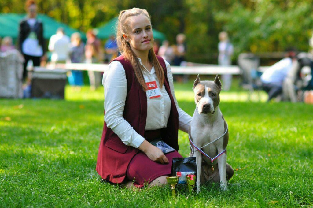 Хендлинг и выставочная дрессировка собак 1