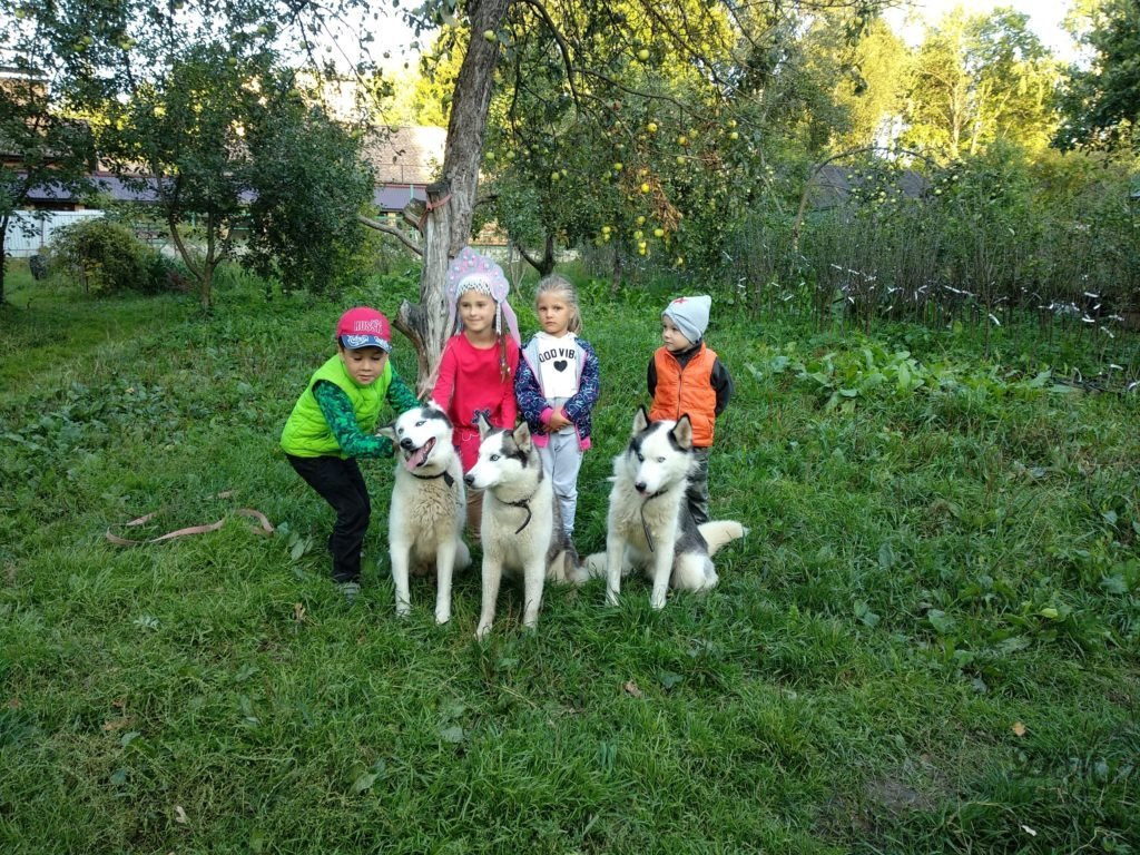 Виды владельцев собак. Какие они? 1