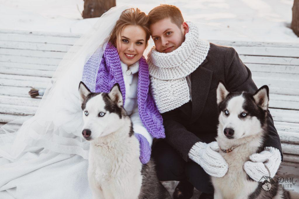 Свадебная фотосессия с Хаски в Москве и Сергиев Посаде. 1